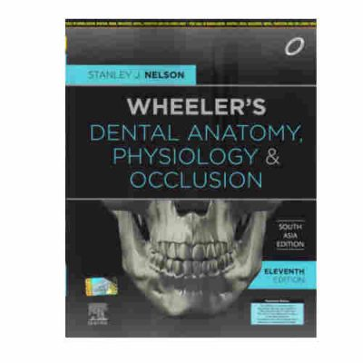 Wheeler's Dental Anatomy, Physiology And Occlusion By Stanley J. Nelson