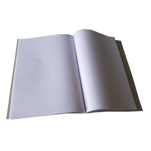 Prithvi's A4 sized 160 page notebook unruled