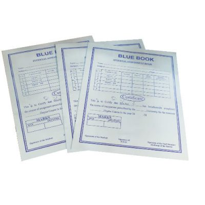 Prithvi's Bluebook for internal assessments (20 pages)